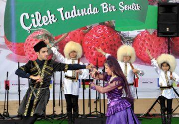 Uluslararası Osmanlı Çileği Kültür ve Sanat Festivali